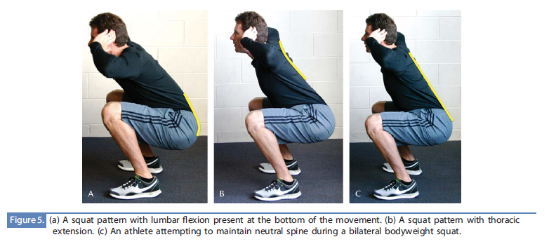 flexion-extension-and-neutral-spine